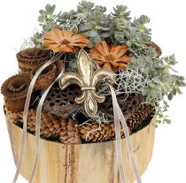 Lotos stempler medium 100stk naturlig