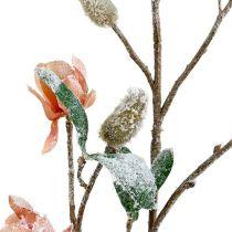 Magnolia gren lysrosa L 82cm