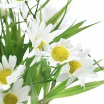Tusenfrydbukett med dekorativt gress 37cm