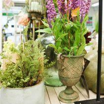 Metallbeker for planting, beger med håndtak, planter Ø25cm H43cm