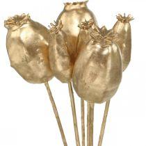 Valmue frøkapsler kunstig valmuefrø gull juledekorasjon 38cm 6stk