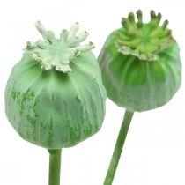 Valmue frøkapsler dekorasjon kunstige valmuefrø på en pinne grønn 58cm 3 stk i en haug
