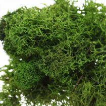 Dekorativ mos for håndverk mørkegrønn naturlig mos konservert 40g