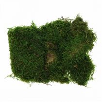 Dekorativ mos for håndverk grønt, mørkegrønt 100g