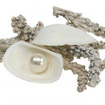 Skallblanding med perle og hvitt tre 200g