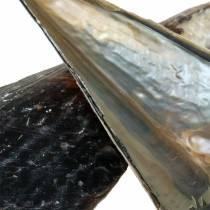 Penneskall svart 24 - 30cm 1kg