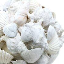Skallkule hvit Ø10cm