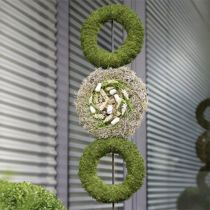 Floral skum ring krans H4cm Ø30cm 4stk
