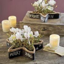 Våt blomsterskumstjerne for arrangementer 25 x 25 x 4,5 cm