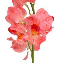 Orchid Mokara Laks 50cm 6stk