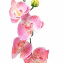 Orchid Phalaenopsis kunstig rosa 60cm