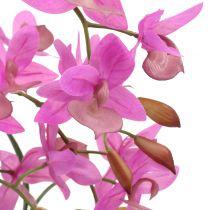 Orkide i en fiolett gryte H55cm