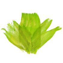 Palmerfiber pastell lysegrønn 400gr