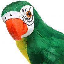 Dekorativ papegøyegrønn 44cm
