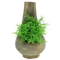 Plantegryte paulownia tre Ø17cm H30cm