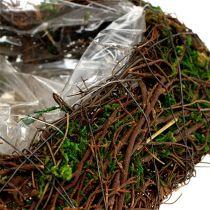 Plant hjertevintre, mose 22cm x 25cm H7cm