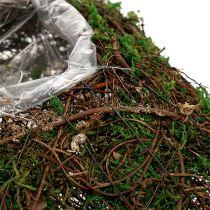 Planteputevintre, mose 22cm x 22cm H7,5cm