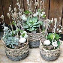 Plantekurv, vevd kurv for planting, rund blomsterkurv naturlig, grå Ø29 / 23,5 / 18cm, sett med 3