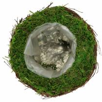 Planterskål rotting, mose Ø16cm H11cm