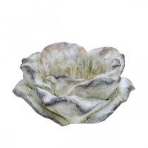 Roseblomst for planting, begravelsesblomster, steinerose, betongdekorasjon grå, aprikos, fiolett Ø11cm L22cm H9cm