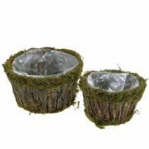 Planteskål mose / bark rund Ø15 / 20cm sett med 2