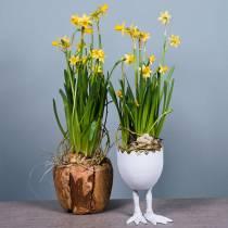 Eggeskall plantepotte med ben Ø13cm H21cm hvit