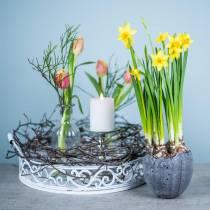 Plantegryte eggeskall Ø12cm H11,5cm 6stk