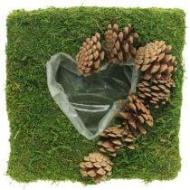 Plantepute hjertemos og kegler firkantet 25 × 25cm