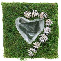 Plantepute hjertemos og kongler, vasket hvit 25 × 25cm
