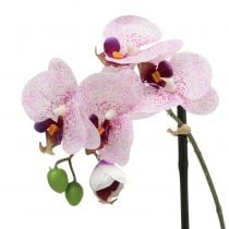 Kunstig Phalaenopsis lilla-hvit i bolle H38cm