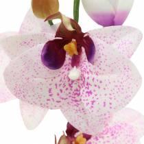 Kunstig orkidé Phaleanopsis White, Purple 43cm