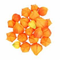 Physalis Orange Assorterte 22stk kunstige kelk