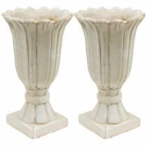 Dekorativ amfora, beger for planting, beger tulipanplantingskanne Ø12cm H25,5cm 2stk