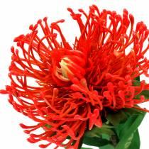 Protea kunstig rød 73cm