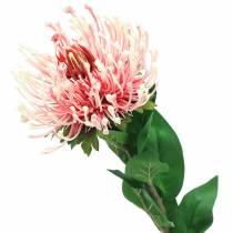 Protea kunstig rosa 73cm