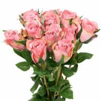 Rose gammel rose 42cm 12p