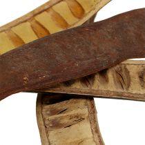 Scaletta belger naturlig 25cm - 50cm 25stk