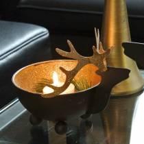 Bolle med reinsdyrhode svart, gyllent metall Ø11 / 14cm sett med 2
