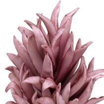 Skumblomst lilla 14cm L66cm