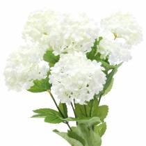 Snowball Viburnum Gren Hvit 42,5cm