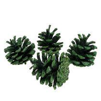 Svarte furukegler grønne frostet 5-7cm 1kg