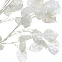 Dekorativ gren sølv blad hvit Lunaria gren kunstig gren 70cm