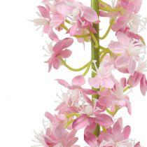 Ørkenhale steppelys rosa 106cm