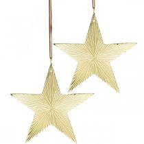 Gullstjerne, adventsdekorasjon, dekorasjonsvedheng til jul 12 × 13cm 2stk