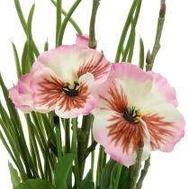 Stemorsblomster med mosekuler rosa 31cm