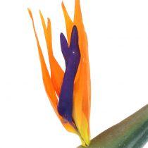 Strelitzia paradisfugl blomst kunstig 98cm
