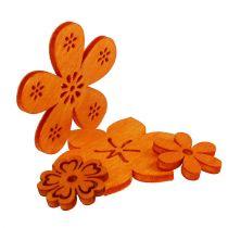 Spredt treblomst oransje 2cm - 4cm 96p
