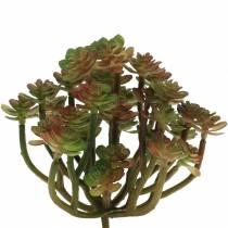 Sukkulent plante kunstig grønn 14cm