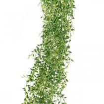 Sukkulent hengende kunstig hengende plante grønn 96cm