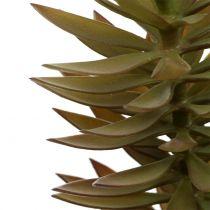 Sukkulent gren lysebrungrønn 48cm